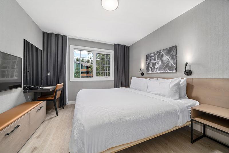 1 king bed in bedroom