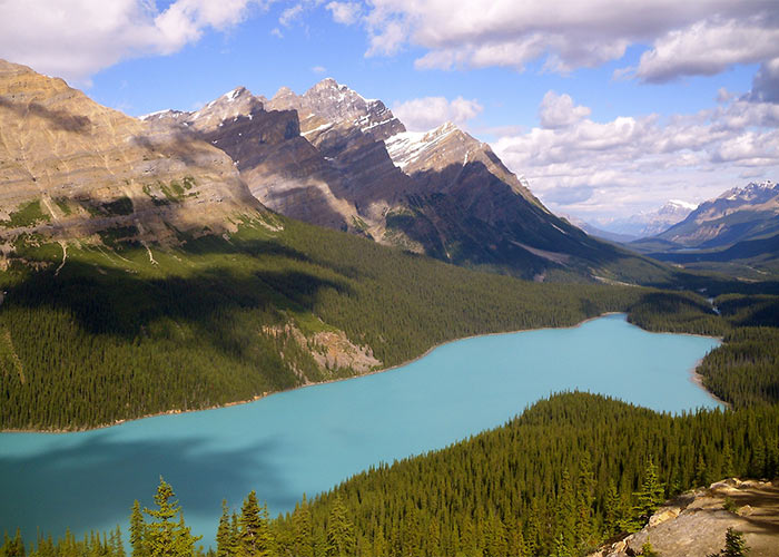 Peyto Lake from viewing platform on sunny summer day
