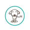 dog friendly room icon