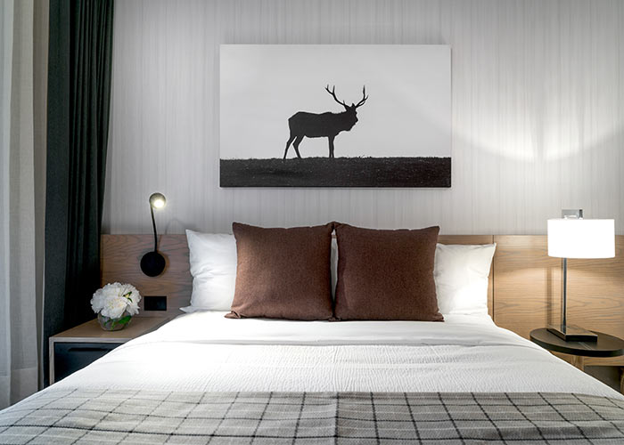 bed with reading lights, decorative pillows and flannel throw