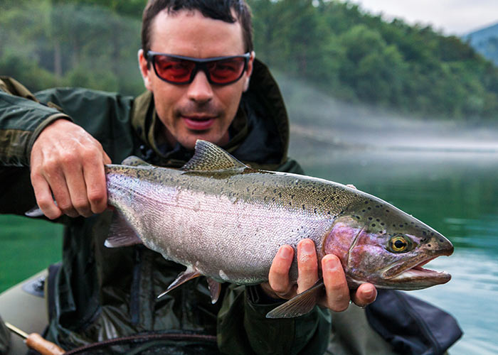 Fisherman holding the catch of Rainbow trout