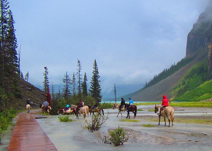 Group on horses traveling through flooder area to mountain trail