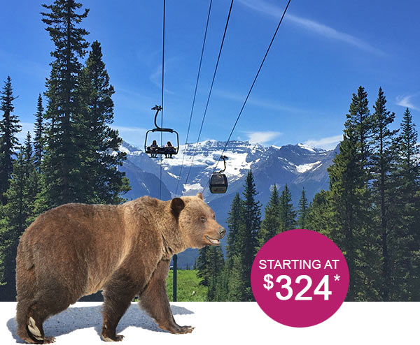 "Gondolas at Lake Louise Resort with a grizzly bear sticker on front and price tag ""starting at $324"""
